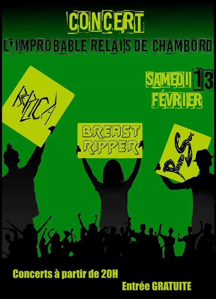 Concert Intense 02 Relais Improbable de Chambord Huisseau sur Cosson 13 Fev 2016