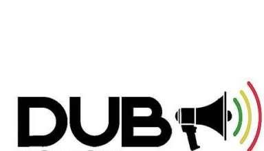 Dub Action Blois